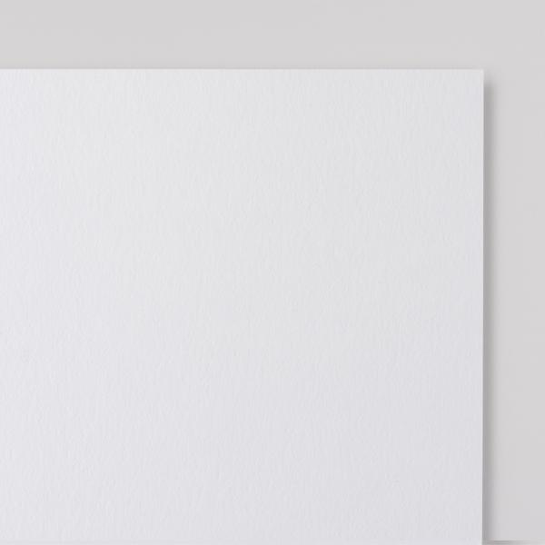 Elderflower White