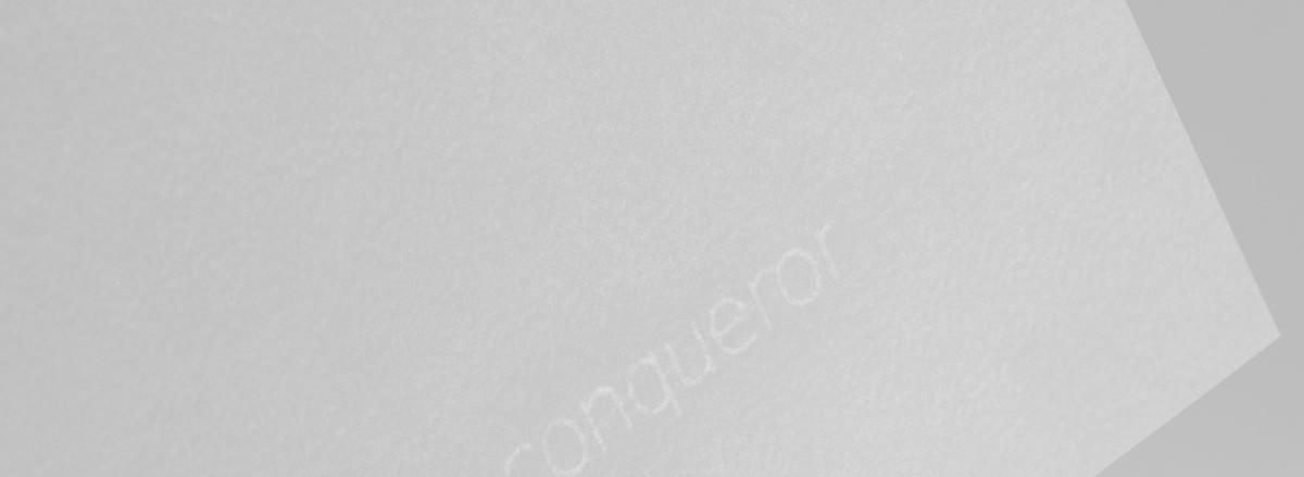 Conqueror CX22 i-Tone®