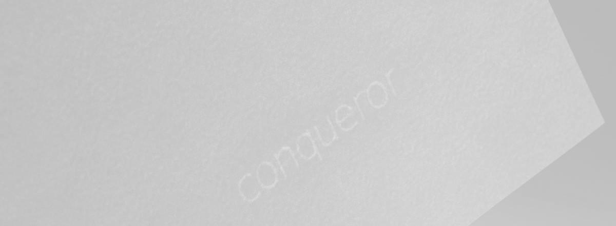 Conqueror Cx22 für Trockentoner